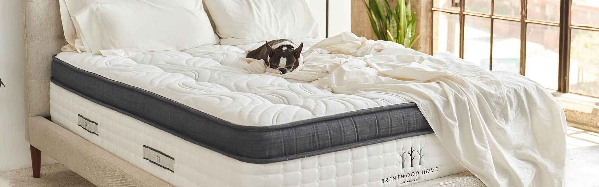 Mattress Brand Reviews >> Costco Mattress Reviews What 2019 Beds To Buy Scams To Avoid