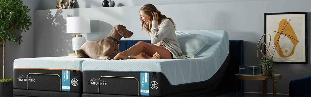 live mattress can tempurpedic mattresses in bed bugs the world rings